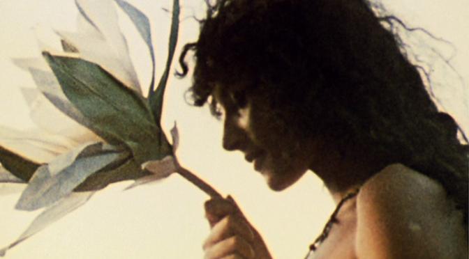 Kapłani taśmy celuloidowej – niezwykła historia filmu eksperymentalnego