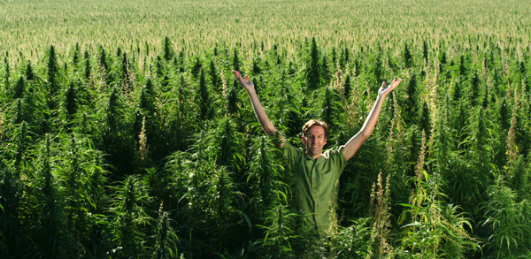 field_of_weed