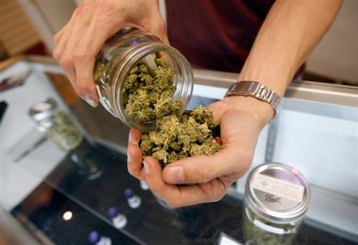 medyczna_marihuana