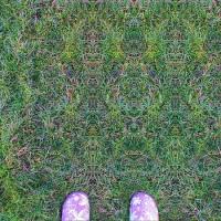 Środki psychedeliczne i doświadczenie religijne