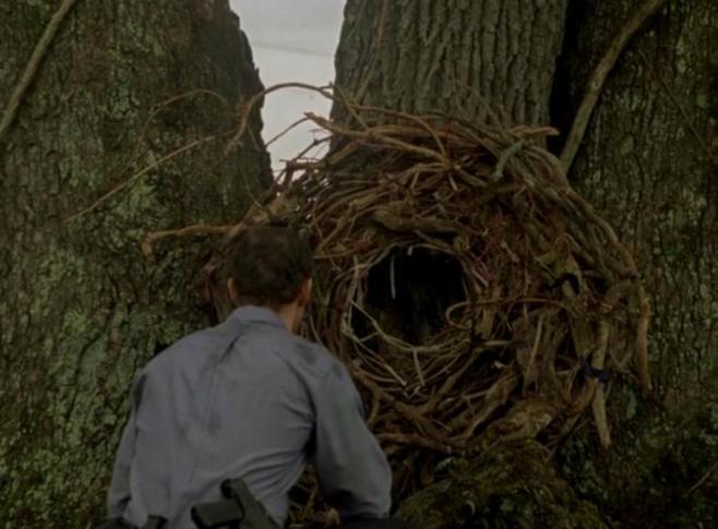 True-Detective-cohle-tree
