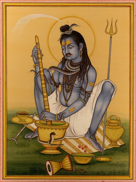 shiva-lord-of-bhang