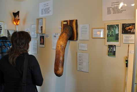 iceland_penis_museum1