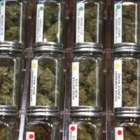 Marihuana jest już w pełni legalna w Kalifornii, ale do pełni szczęścia jeszcze daleka droga