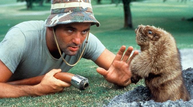 Próba przemytu 5 kilogramów marihuany otworzyła Billowi Murrayowi karierę aktorską!