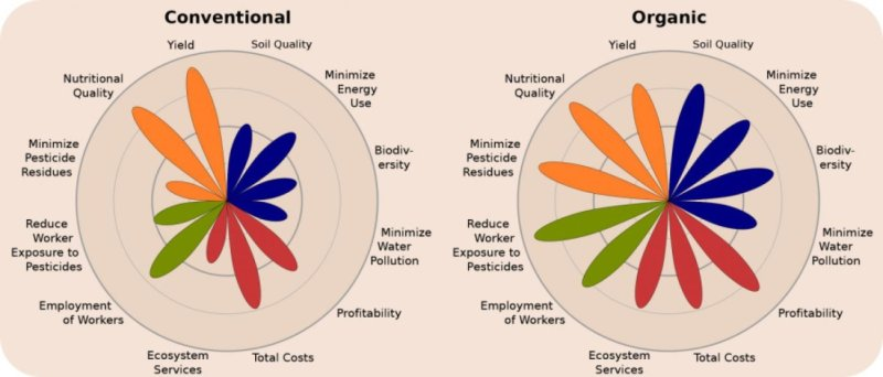 schemat_rolnictwo_organiczne_vs_konwencjonalne
