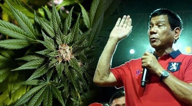 Medyczna marihuana może zostać zalegalizowana na Filipinach po tym jak przywrócono karę śmierci za łamanie prawa antynarkotykowego!