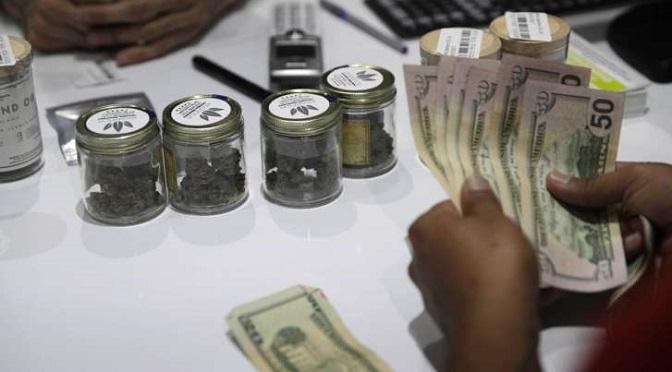 """Gubernator Nevady ogłosił """"stan wyjątkowy""""… bo w sklepach zabrakło marihuany!"""