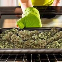 Jak i po co dekarboksylować marihuanę?