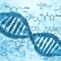 Opracowano rewolucyjną metodę testowania antycznego DNA w próbkach glebowych